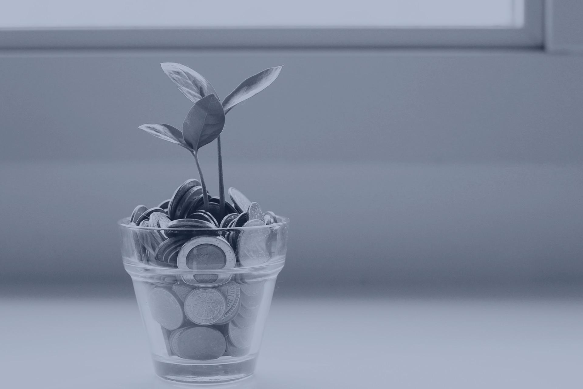dinero-brotes verdes- Refinanciación de Deuda Empresarial
